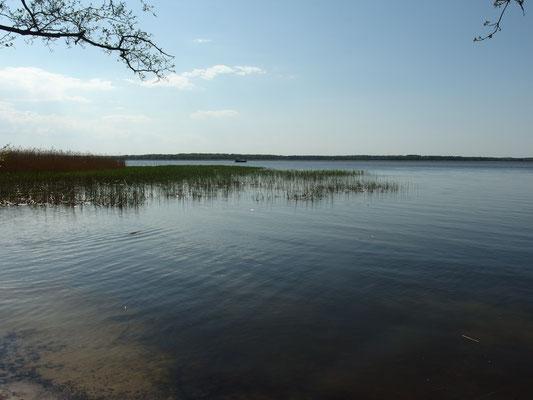 Achterwasser