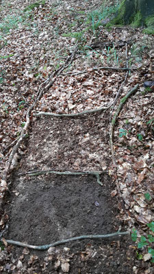Bodenleiter - wir untersuchen die Schichten im Boden