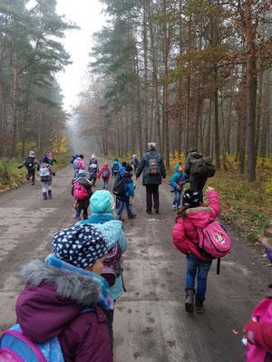 Der Ausflug inden Wald beginnt