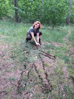Die Waldfee hinterlässt Spuren...