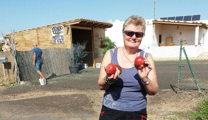 Granatäpfel von Marian und Franz
