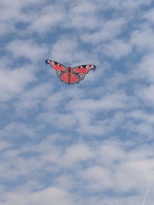 Schmetterling von Sven aus einem Workshop von Carsten Domann