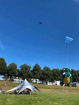 Einige der wenigen Drachen, die bei den Windverhältnissen geflogen sind.