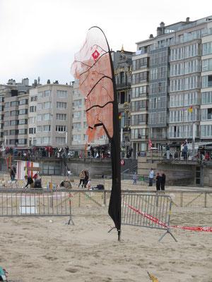 Lothars Baum vor der Strandpromenade. Mal sehen an welchen Orten der Baum noch wachsen wird.