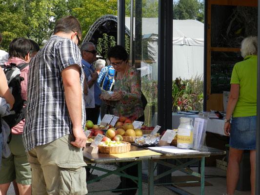 Aromatische Vielfalt aus der Region: Aktionstage rund um den Apfel im Netzwerkgarten