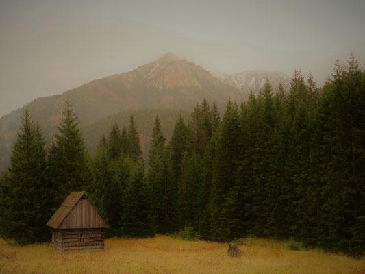 20. Muntanyes de Zakopane