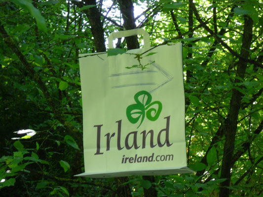 Frühling International, Irland im Wicklow Garden, 16.06.2013