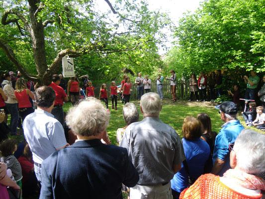 Frühling International, 10.05.2015 (Celtic Cross School of Irish Dance, Leitung: Tatjana Kramhöller)