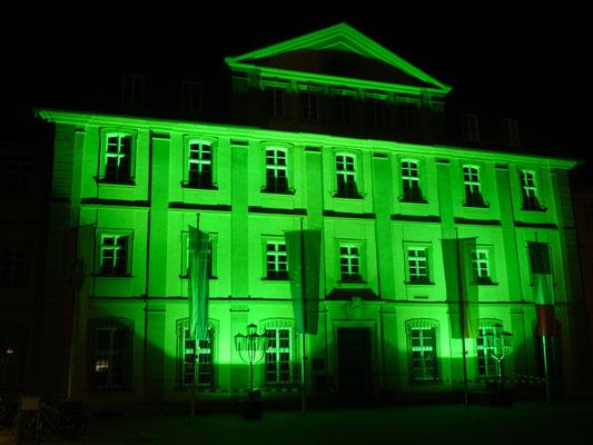St. Patrick's Day, Rathaus, 17.03.2016