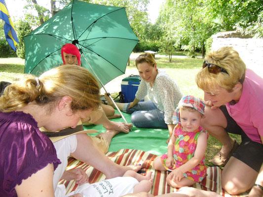 Irisches Picknick im Wicklow Garden, 28.07.2013