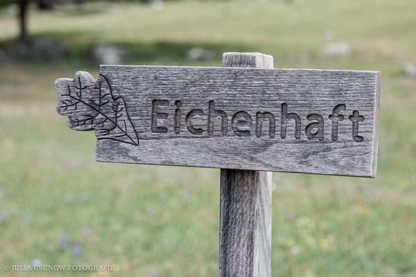 eichenhaft, maienfeld, heididorf