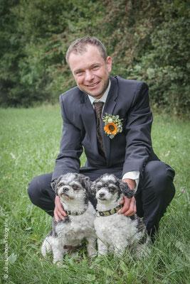 Bräutigam mit Hunden