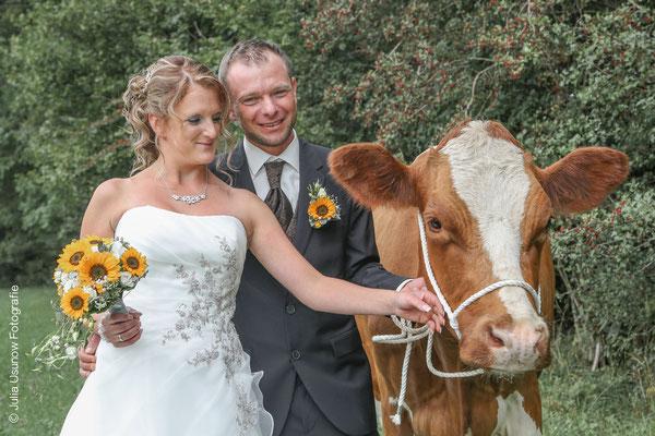 Fotoshooting Brautpaar mit Kuh