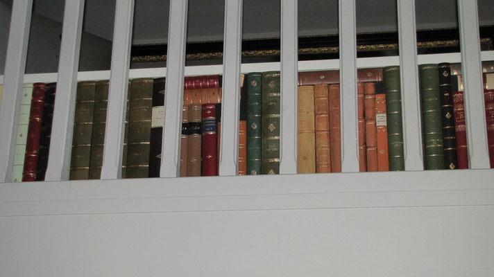Nicchie di un mobile coperte di finti libri