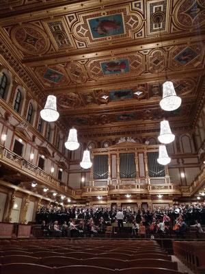 Goldener Saal des Wiener Musikvereins, Dezember 2019