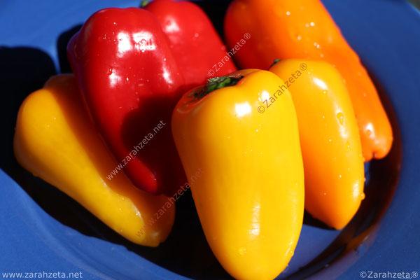 Zarahzetas Fotowand mit Paprika in Gelb und Rot