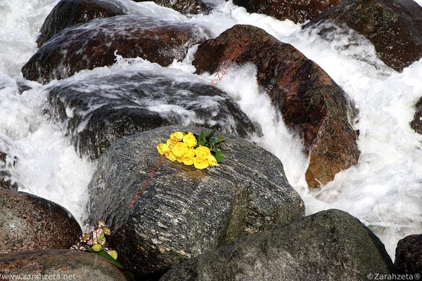 Strauß gelber Rosen auf Felsen am Meer