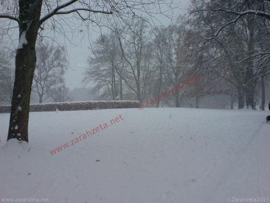 Schnee im Stadtpark
