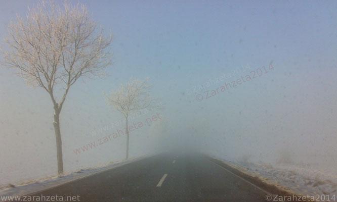 Nebel in Schneelandschaft