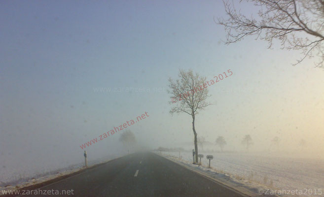 Nebel und Schnee auf der Landstraße