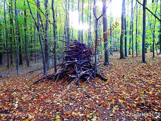 Holzstapel als Hexenwerk im Märchenwald