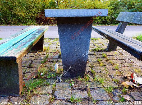 Tisch und Sitzbänke auf einem Autorastplatz