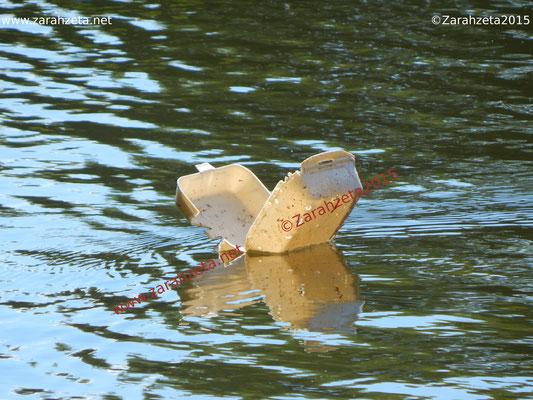 Schwimmender Plastikmüll auf dem See