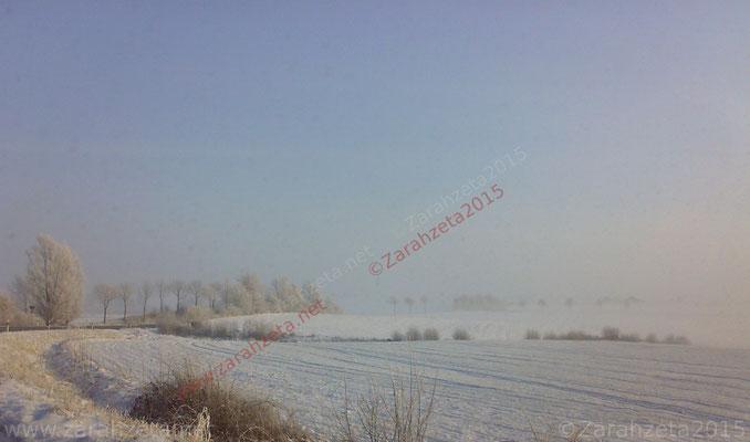 Schneelandschaft auf dem flachen Land