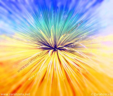 Sprossachse eines Kormus als florales Feuerwerk oder Urknall