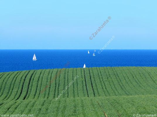 Natürliche grüne Welle ins Meer