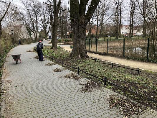 2019-03-16 Beet am Mittelweg säubern