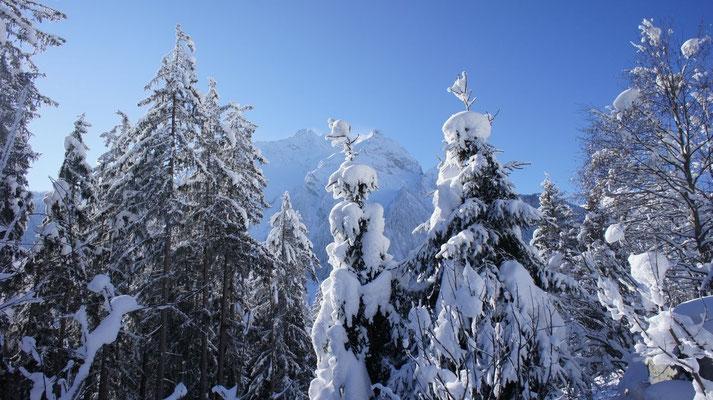 Skitour Zillertaler Alpen Jänner 2013