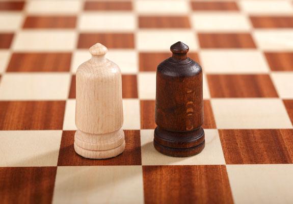Großes Schach 10x10 Kardinal