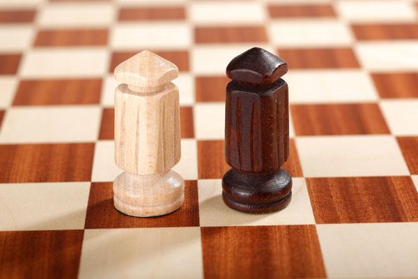 Großes Schach 10x10 Minister