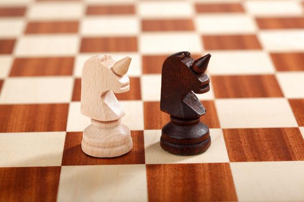 Großes Schach 10x10 Einhorn