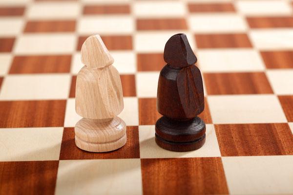 Großes Schach 10x10 Adler