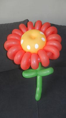 Kwiat z balonów - 9 zł