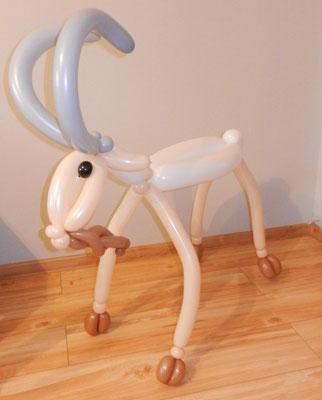 Koza z balonów - 39 zł