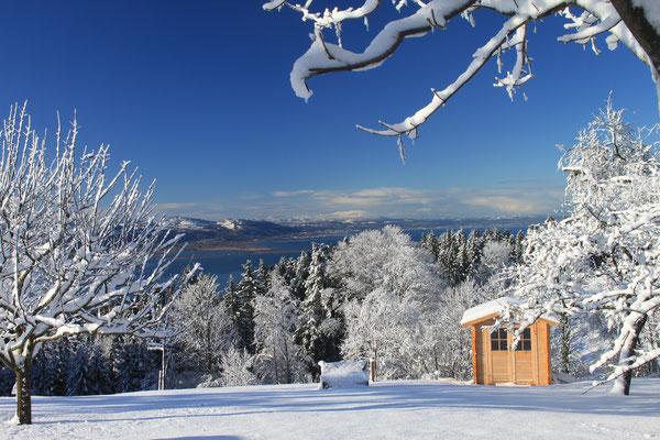 Traumhafter Winter-Ausblick auf den Bodensee