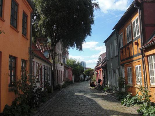 Straße Møllestien