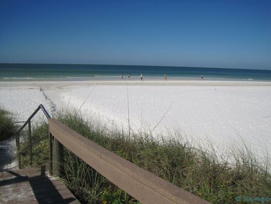 Siesta Key - gorgeous beaches