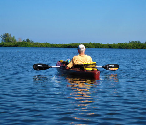 Sarasota Siesta Key - go kayaking and watch our dolphins