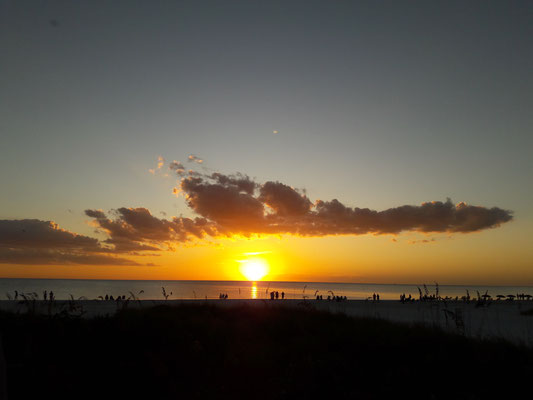 Siesta Key Crescent Beach - do not miss out our gorgeous sunsets