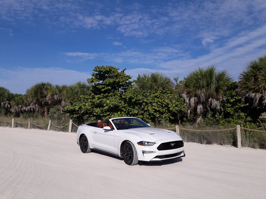 Ford Mustang perfect vehicle for your Florida vacation