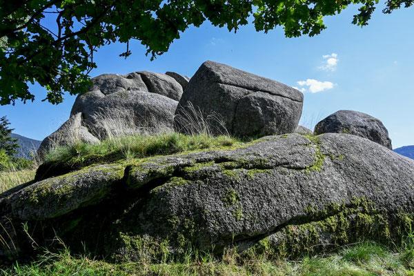 Schwarzwald Nordschwarzwald Felsen
