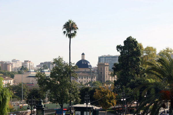 Vista desde lo alto de las Torres del  Museo de bellas Artes Pio V.