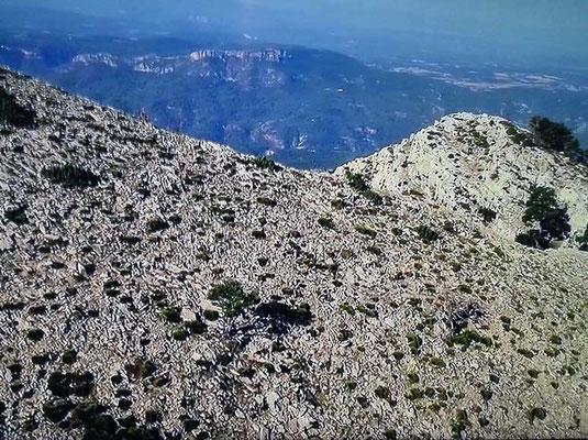 El territorio agreste del Maestrazgo en Castellón (España)