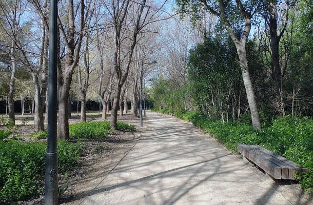 Seguimos el sendero hasta dar la vuelta al parque
