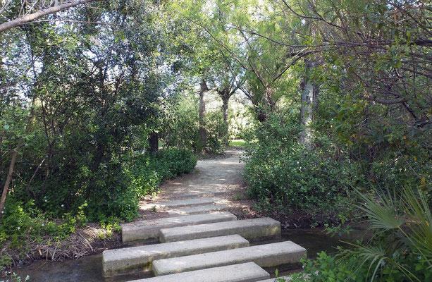 El parque cuenta con varios puentes