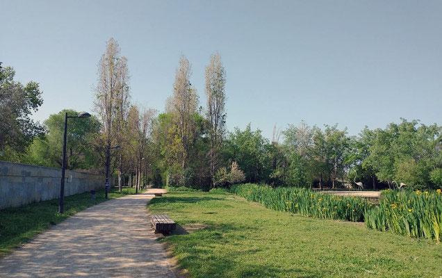 Al entrar en el parque nos encontramos con dos caminos, uno a la izquierda y otro a la derecha que bordean el lago